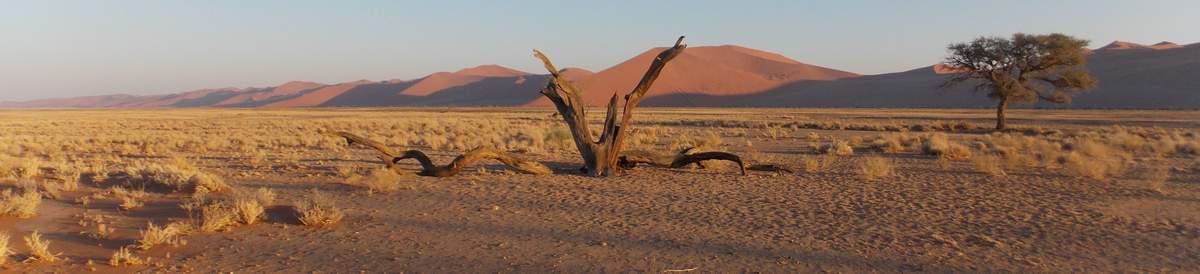 Namibia-2601